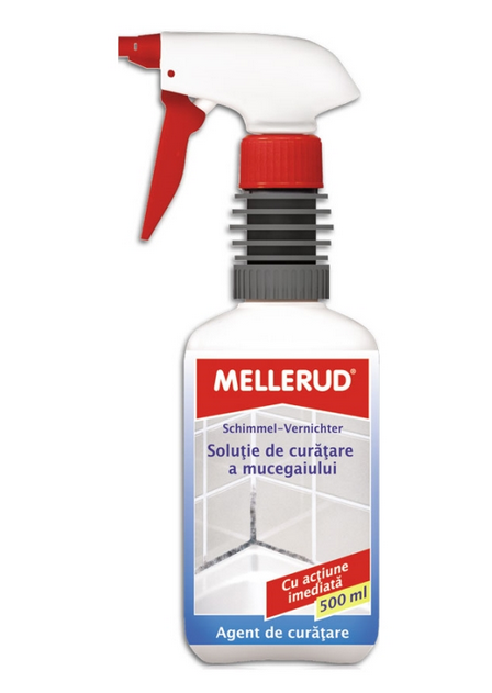 solutie_indepartare_mucegai